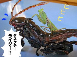 B_hopper2