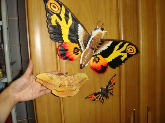 Mothras