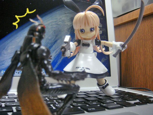 Hoihoi_vs_black