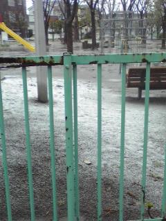 雪が降ってる!